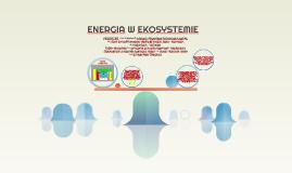 ENERGIA W EKOSYSTEMIE