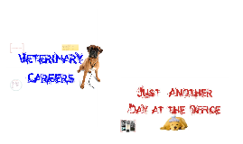 Copy of Veterinary Careers