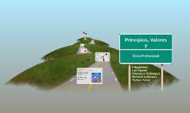 Principios, Valores