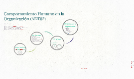 Comportamiento Humano en la Organización