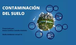 Copy of CONTAMINACION DEL SUELO