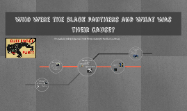 What was the driving motive behind the black panther movement