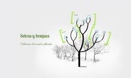 Conceptos básicos acerca del bosque y la selva