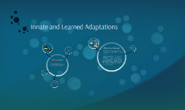 Innate and Learned Adaptations