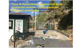 Tema 3:Tratamientoenlainvolución motora