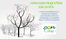 GIMNASIO PEQUEÑOS GIGANTES