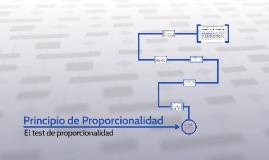 El Principio de Proporcionalidad