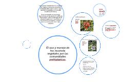 el uso de recursos vegetales por las comunidades prehistoric