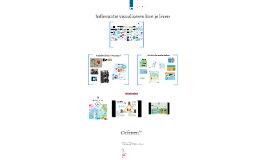 Copy of Infomatie visualiseren kun je leren
