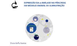 Copy of EXPRESSÃO DA α-AMILASE NO PÂNCREAS EM MODELO ANI