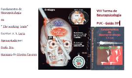 Livro Fundamentos da Neuropsicologia