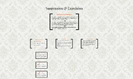 Suspension & Expulsion Representation