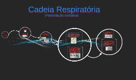 Cadeia Respiratória (fosforilação oxidativa)