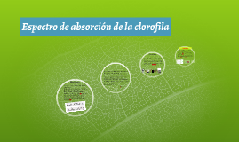 QAN. U4. Espectro de absorción de la clorofila