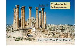 Aula 12 - Produção de Artemisinina