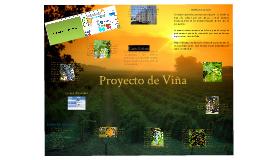 PROYECTO DE VIÑA
