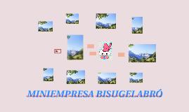 MINIEMPRESA BISUGELABRÓ