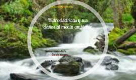 Hidroelectricas y sus daños al medio ambiente