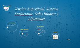 Tension Superficial, Sistema Surfactante, Sales Biliares y L