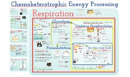 Energy 5: Chemoheterotrophic Nutrition