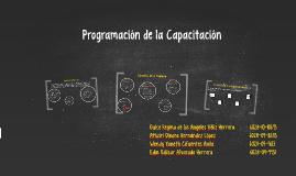 Programación de la Capacitación