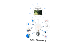 SSH Sensory