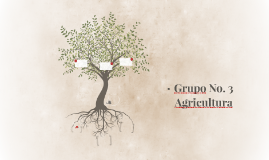 Grupo No. 3