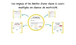 Les enjeux et les limites d'une classe à cours multiples en