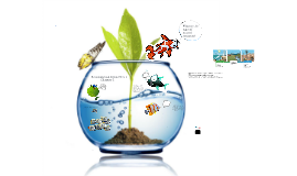 Copy of Environmental Science Unit 1