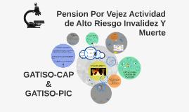 Pension Por Vejez Actividad de Alto Riesgo Invalidez Y Muert