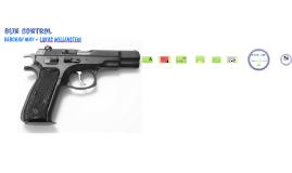 Copy of Gun Contol