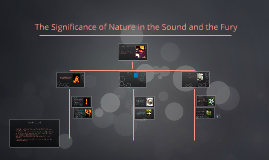 The Significance of Nature in the Sound and the Fury