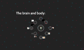 The brain and body