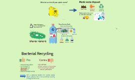 Bacterial Plastic Recycling