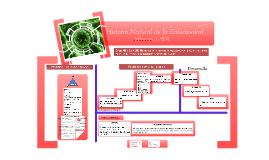 Copy of Historia Natural influenza AH1N1