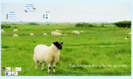 Etat des lieux des activités agricoles