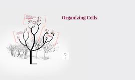Organizing Cells