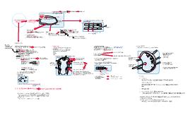 Copy of lymph system