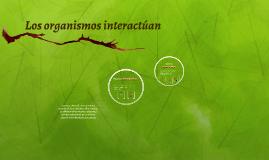 Los organismos interactúan