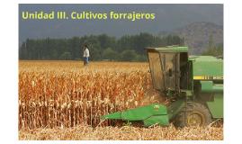 Unidad III. Cultivos forrajeros