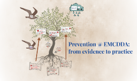 Prevention @ EMCDDA: from evidence to practice