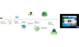 Objetivos, principios y Enfoques de la educación ambiental