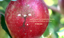 literary analysis of by isaac wall on prezi apple breeders changing the world 039 s tastebuds one