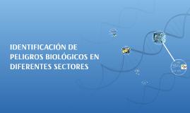 IDENTIFICACIÓN DE PELIGROS BIOLÓGICOS EN DIFERENTES SECTORES