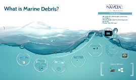 Copy of Marine Debris