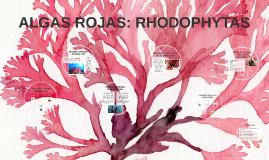 ALGAS ROJAS: RHODOPHYTAS