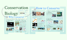 Ecology 1b: Conservation Biology