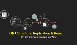 DNA Structure, Replication & Repair