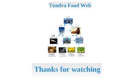 tundra food web!!!!