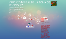 CIRCUITO NEURAL DE LA TOMA DE DECISIONES DEFINITIVA